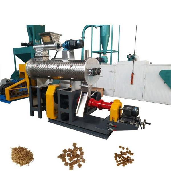 Pet Snack Dry Dog Food Processor Processing Freeze Drying Making Machine Equipment Price