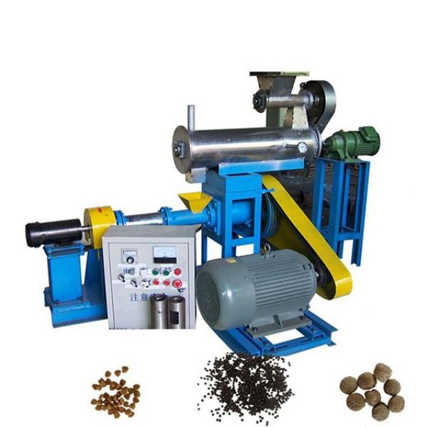 Twin Screw Extruder Equipment of Wet Dry Pet Food Processing for Dogs to Producing Machine